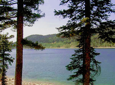 Navajo Lake Lodge Your Place For Fun Under The Sun In